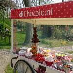 Heb je deze zomer een schoolfeest, tuinfeest of een barbecue met je familie? De mobiele ChocoExpress heeft een vitrine waardoor de chocoladefontein goed beschermd wordt tegen wind.